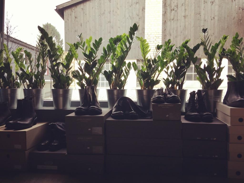 Pflanzen in der Schuhabteilung